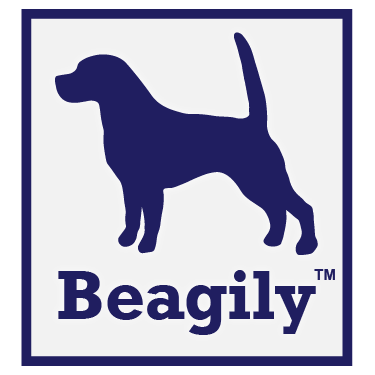 Xilution - Basics - Beagily